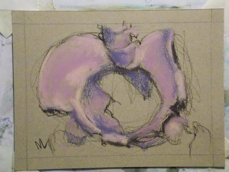 pastel painting of a pelvis