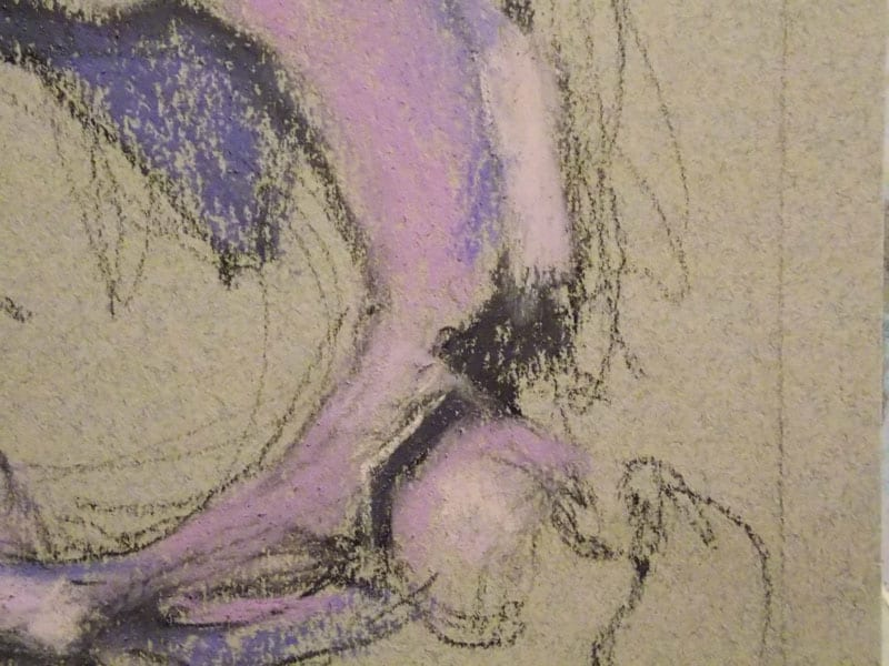 detail of a pastel painting of a pelvis