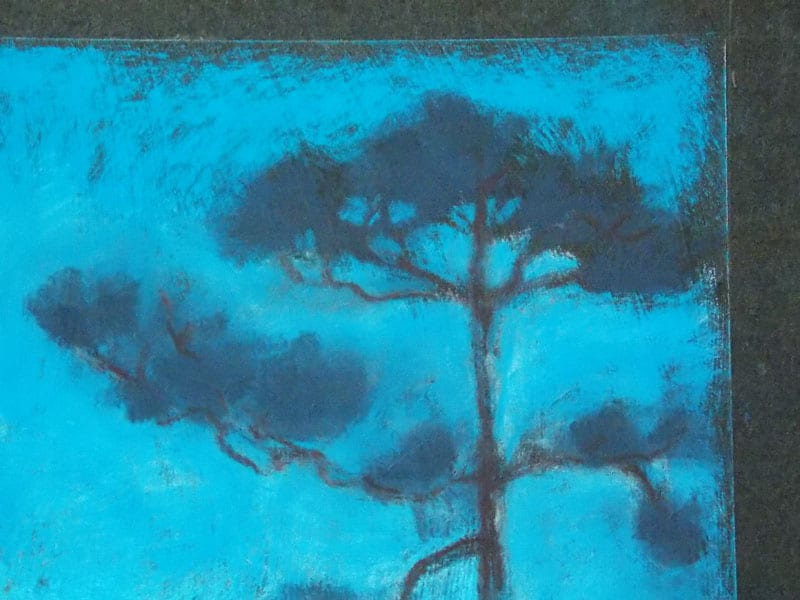 pastel painting of a pine tree in the Julington-Durbin Preserve
