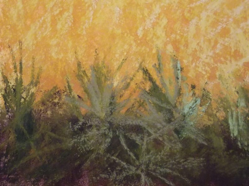 pastel painting of grasses in the Julington Durbin Preserve
