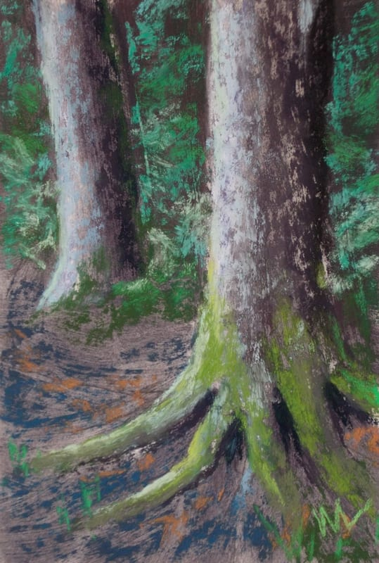 pastel painting of two trees in the Julington Durbin Preserve