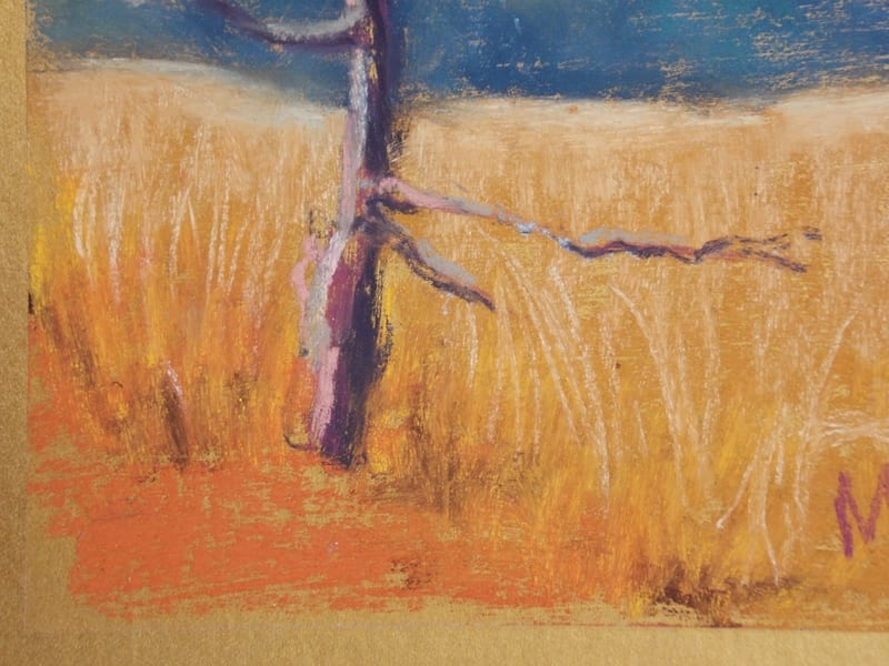 pastel painting of a tree in a field of grass in the Julington Durbin Preserve