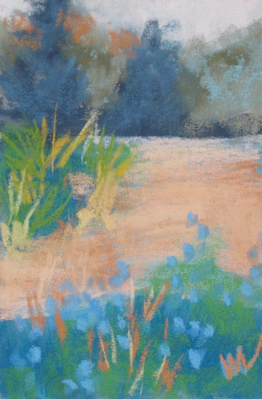 pastel painting of flowers and grass in the Julington Durbin Preserve