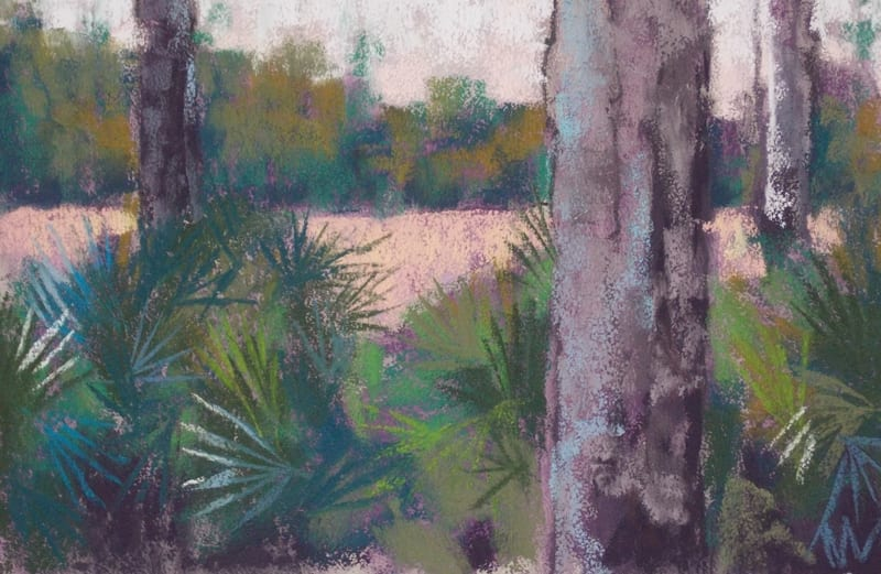 pastel painting of pines and saw palmetto in the Julington Durbin Preserve