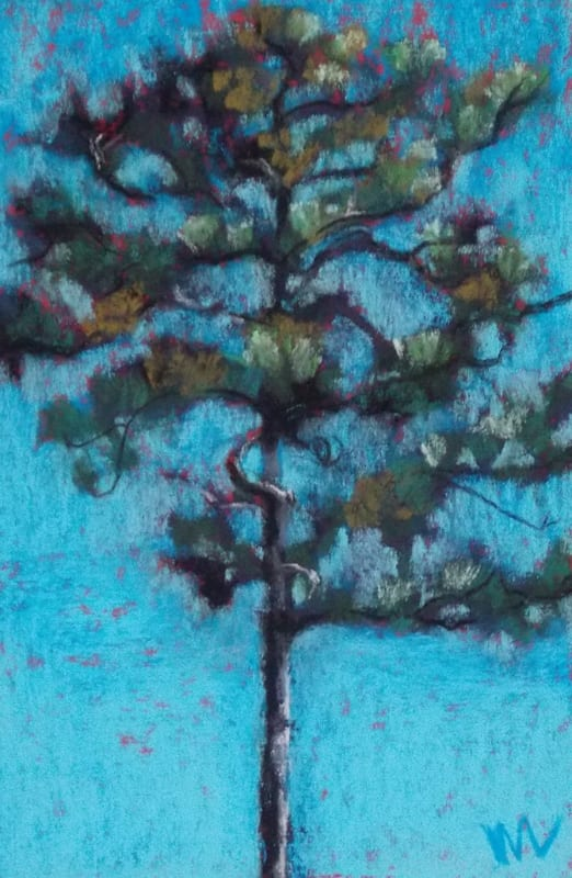 pastel painting of a tall pine silhouetted against a blue sky