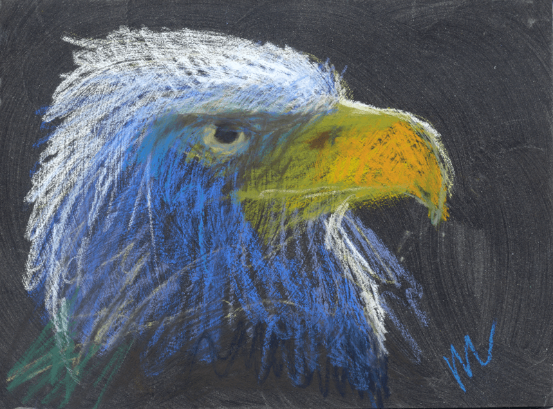 Eagle's head in pastel pencil