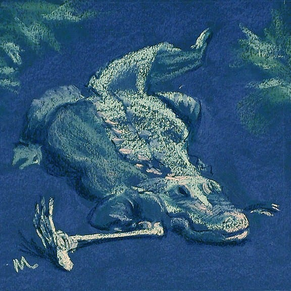 Pastel painting on Canson mi teintes paper of an alligator keeping a claw on a shin-bone with attached foot at the Alligator Farm in St. Augustine, Florida.