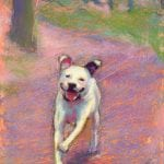 pastel painting of a dog running along a path in the woods