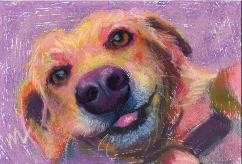 "Marie Marfia, Boop My Snoot?, soft pastel on textured board, 6x9""."