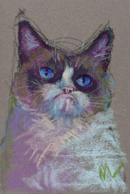 """Marie Marfia, Grumpy Cat, soft pastel on paper, 9x6""""."""