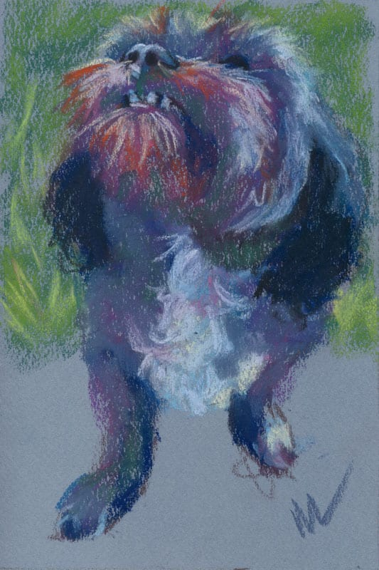 """Marie Marfia, Mitzi Steps Out, soft pastel on paper, 9x6""""."""
