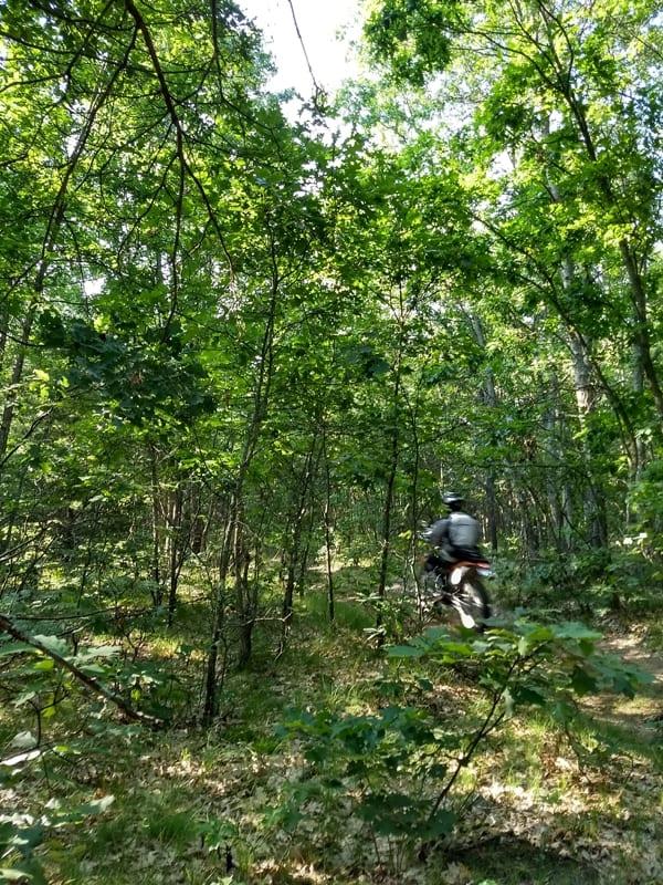 dirt bike in the woods