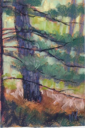 pastel painting on paper of a tree in the woods