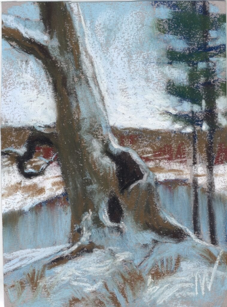pastel painting of a tree on the bank of the river in the forest
