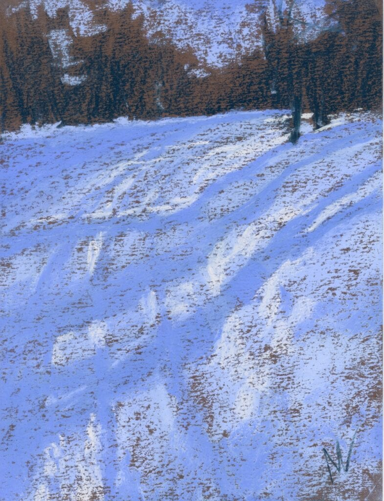 pastel painting of shadows cast on the snow in the woods