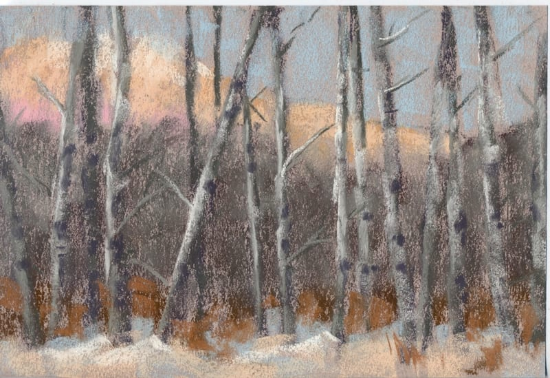 pastel of a stand of aspen trees in snow