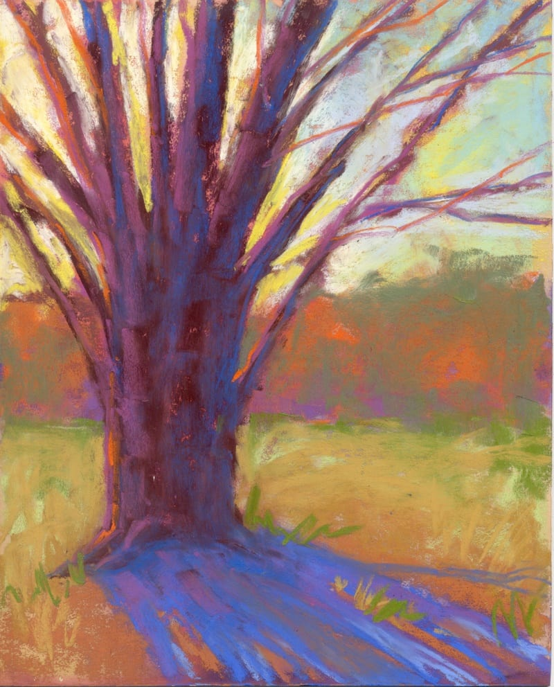 Boom! pastel painting of a tree in morning sun