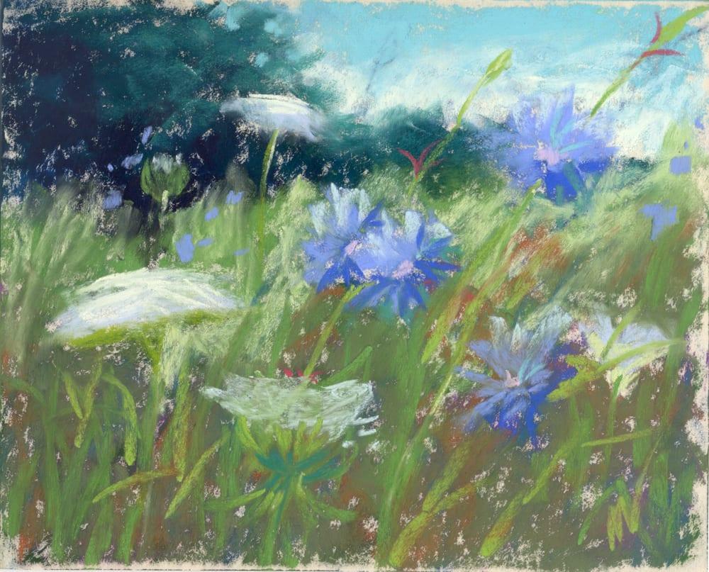 wild flowers grass