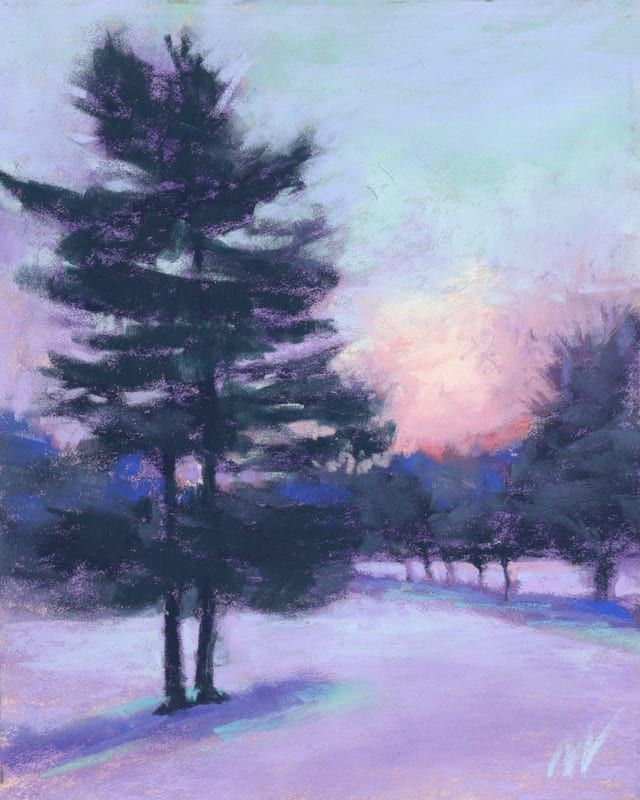 sunrise pine trees snow