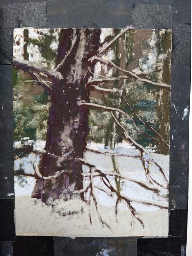 pastel painting of a large pine tree in snow